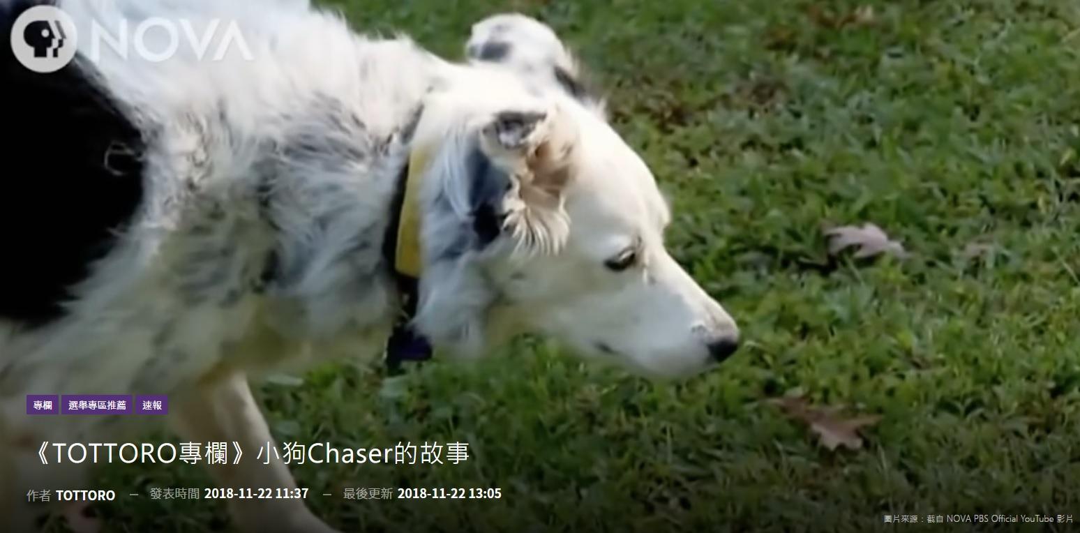 小狗Chaser的故事