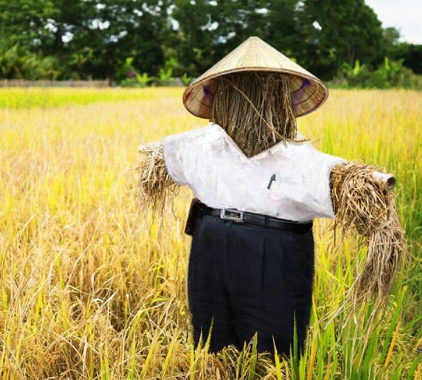 無魂有體親像稻草人