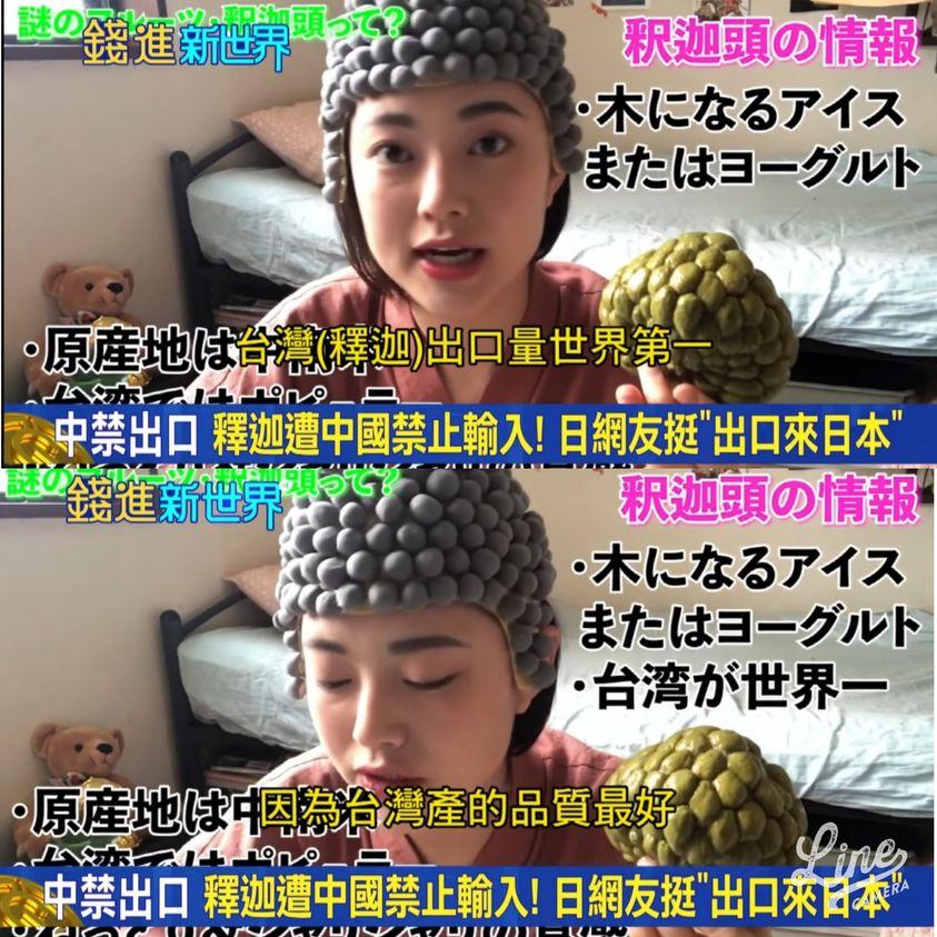 日本人挺台灣  釋迦頭好可愛